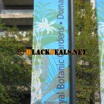 Royal Botanic Garden & Domain
