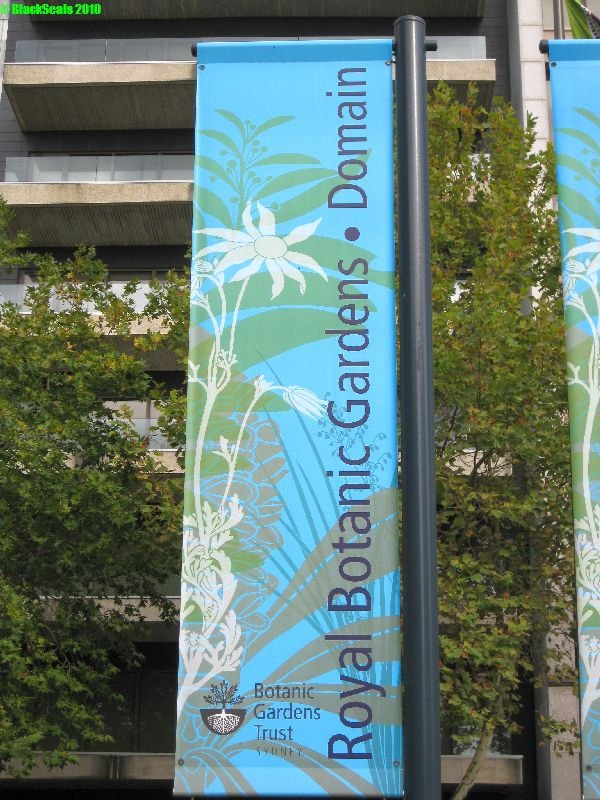 Read more about the article Royal Botanic Garden & Domain