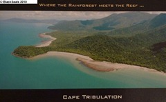 Cape_Tribulation
