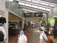 Frogs_Restaurant