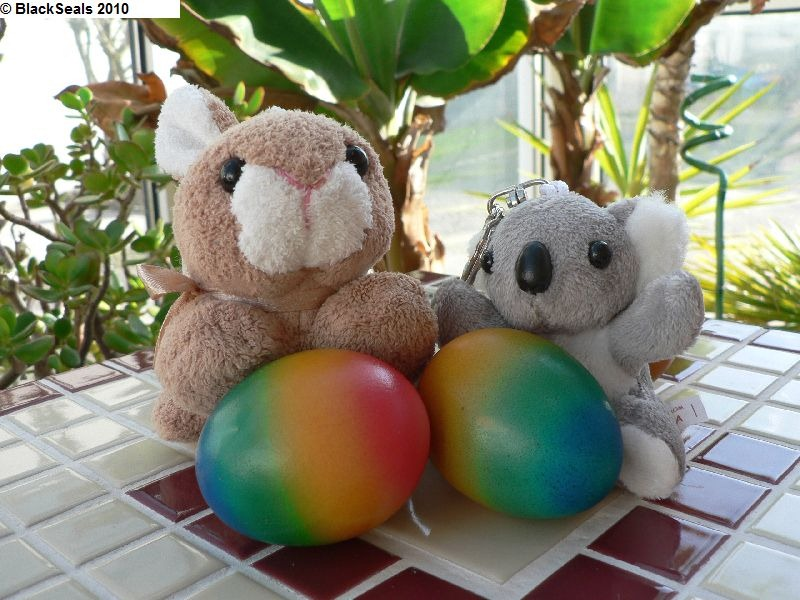 Read more about the article Frohe Ostern