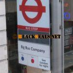 London: Big Bus Tours