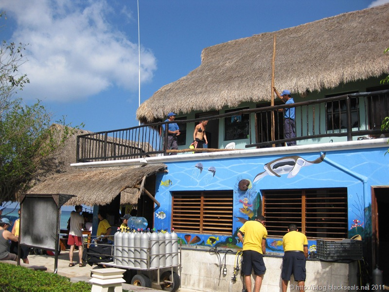 Read more about the article Tauchen auf der Insel Cozumel