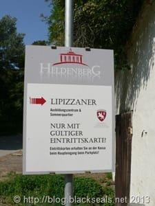 heldenberg_lippizaner
