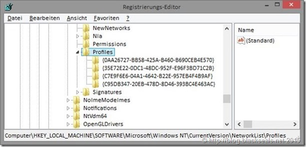 regedit_networklist