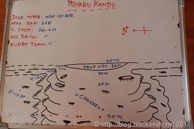 miyaru_kandu
