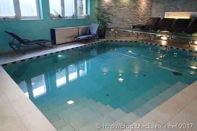 hotel_leitner_pool_1