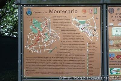 tag6_montecarlo_2