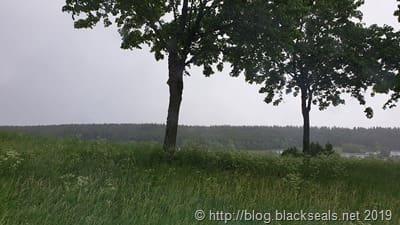 cip-tramelan_regen-und-nebel