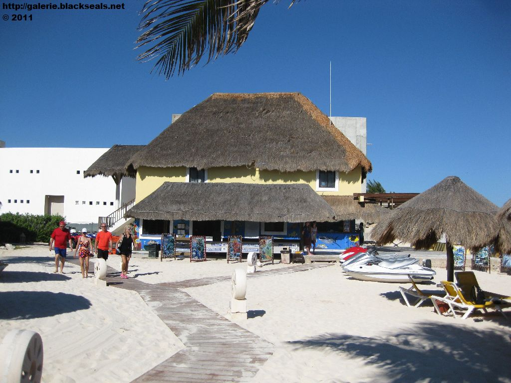 Read more about the article Mexiko 2011: Iberostar Paraiso Anlage