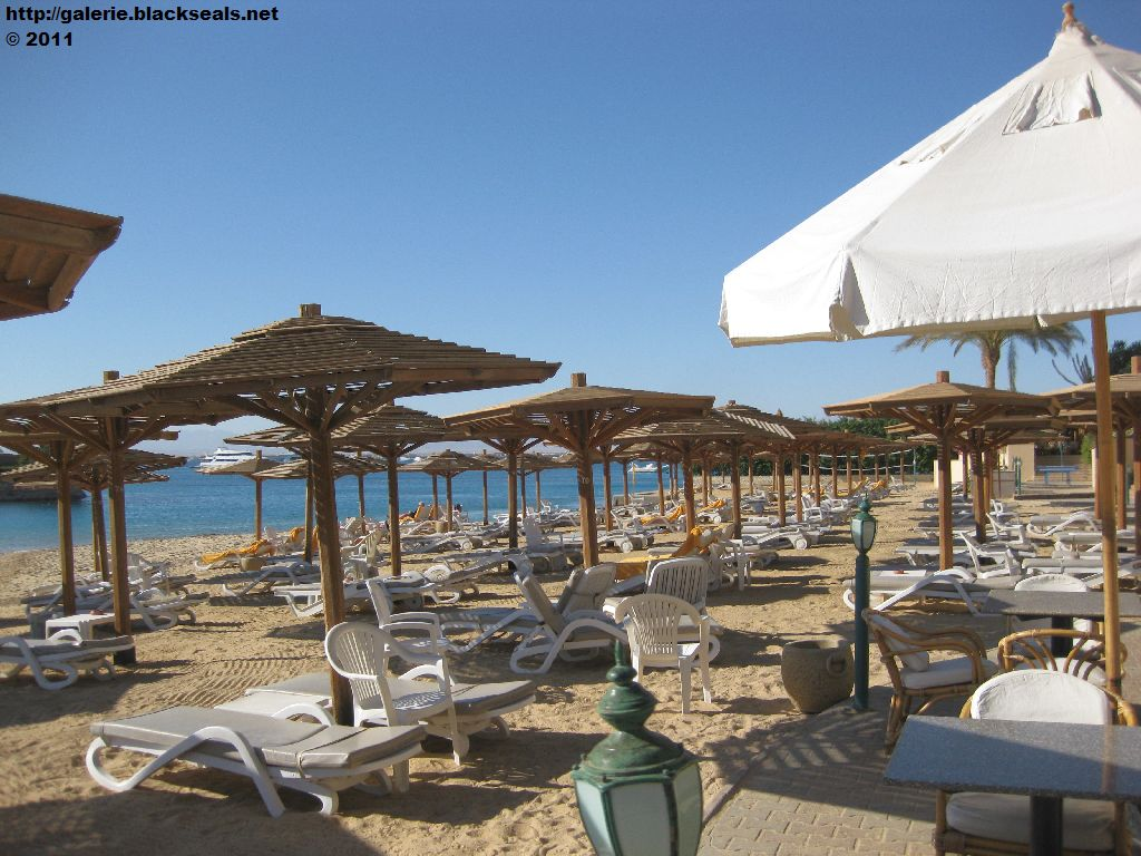 Read more about the article Rotes Meer 2011: Marriott Beach Resort