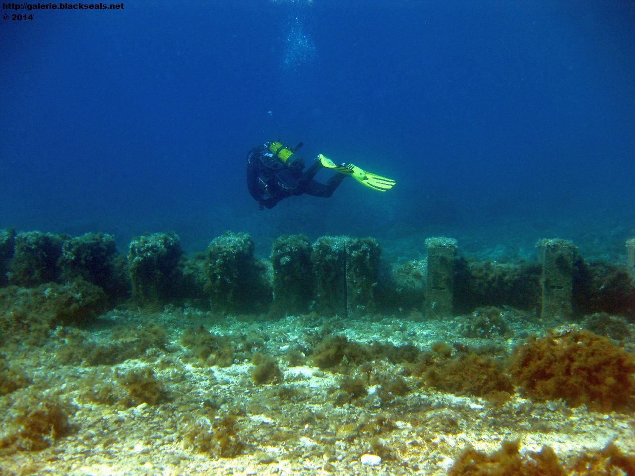 Read more about the article Tauchen Gozo, Malta