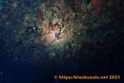malta-2021-tag5-anchor-bay-3
