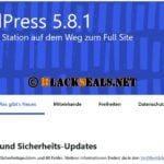 WordPress 5.8.1 und 5.7.3 sind da