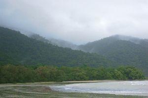 Cape Tribulation und Daintree River, Palm Cove