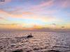 vaavu-atoll-10