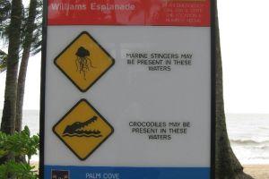 Palm Cove, Australien